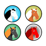 Horse icons set. Head of animal with multi-colored mane. Differe Royalty Free Stock Image