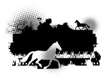 Horse  illustration Stock Images