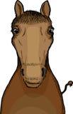 Horse Illustration Royalty Free Stock Image