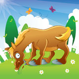 Horse Illustration Cartoon Royalty Free Stock Photography