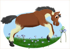 Horse and inchwork. Cartoon horse and inchworm in a field of flowers vector illustration
