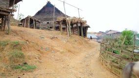 Horse at indigenous native tribal Akha tribe village,Pongsali,Laos stock video footage