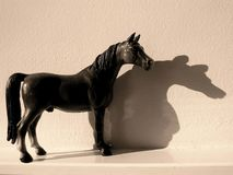 The horse and its shadow stock image