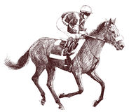 Horse and jockey. Vector illustration of a racing horse and jockey Royalty Free Stock Photography