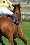 Horse and jockey. Running up to finish line Royalty Free Stock Image