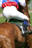 Horse and jockey Stock Photography