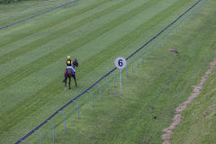Horse Jockey Alone Track Stock Photo
