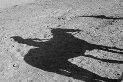 Horse and jockey shadow. Stock Images