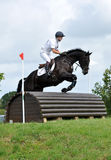 Horse jump Royalty Free Stock Photos