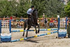 Horse jump Stock Photo