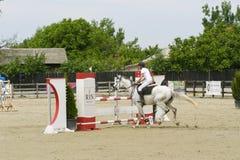 Horse jump Royalty Free Stock Photo