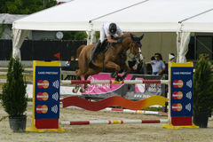 Horse jump Stock Image