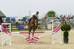 Horse jump Stock Photos