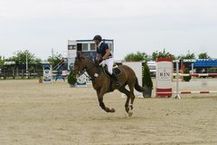 Horse jump at the equitation contest. In Bucharest stock photos
