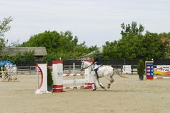 Horse jump at the equitation contest. In Bucharest royalty free stock photo