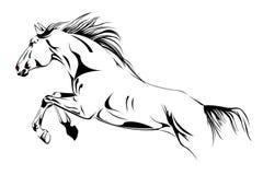 Horse jump illustration stock images