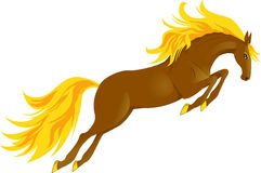 Horse jump. Jumping beautiful horse with a golden mane and golden hooves Stock Photography
