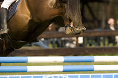 Horse Jumping 004. Horse in a show jumping event Royalty Free Stock Photography