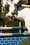 Horse Jumping 015. Horse in a show jumping event Stock Image