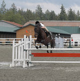 Horse Jumping. Horse and rider clear jump at equestrian competition Royalty Free Stock Photos