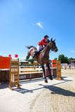 Horse jumping Royalty Free Stock Photos
