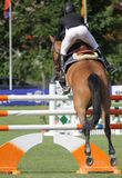 Horse jumping. A horse jumping during a horse competition in Italy Royalty Free Stock Photography