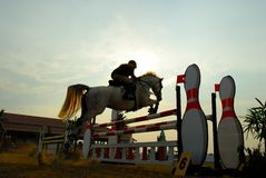 Horse jumping. A show jump horse trying to overcome hurdles at Premiercup Equestrian event in Putrajaya Malaysia Stock Images