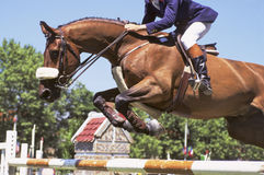 Horse jumping. A horse passing over a fence during a jumping competition Stock Photo