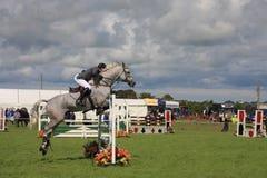 Horse jumping Royalty Free Stock Photos