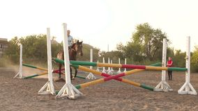 Horse is jumping through a barrier in competition. Female rider practicing show jumping, jumping the fence. Horse jump over obstacle in slow motion. Girl riding stock video