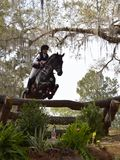 Horse jumping a barrier in a horse trial. Red Hills Horse Trials in Tallahassee, Florida. A bay and rider jump a wooden barrier Stock Photography