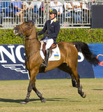 Horse jumping - Cassio Rivetti Royalty Free Stock Photo