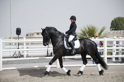 Horse Jumping Championship. In Dubai Royalty Free Stock Image