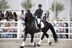Horse Jumping Championship. In Dubai Royalty Free Stock Images