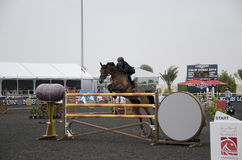 Horse Jumping Championship. In Dubai Royalty Free Stock Photography