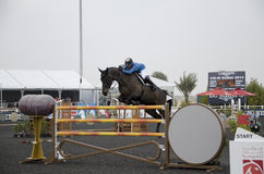 Horse Jumping Championship Royalty Free Stock Images