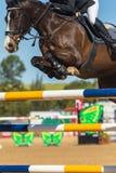 Horse Jumping Closeup. Horse jumping poles closeup unidentified rider Royalty Free Stock Photos