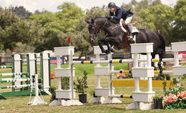 Horse Jumping Competition, Del Mar, California. A horse and rider jump over an obstacle on a course in an equestrian riding show in the Del Mar Fairgrounds Stock Photo