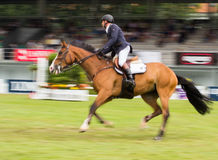 Horse jumping competition Royalty Free Stock Images