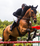 Horse jumping competition Stock Images