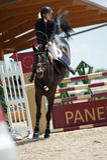 Horse jumping competition in Pezinok, Slovakia Royalty Free Stock Photo
