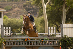 Horse Jumping, Del Mar, California Stock Photo
