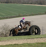 Horse jumping a fence in English countryside Royalty Free Stock Images