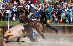 Horse jumping a fish in water during a race. Royalty Free Stock Photography