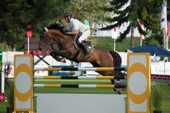 Horse-jumping Grand Prix Bratislava CSIO-W*** 2010 Stock Photo