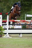 Horse-jumping Grand Prix Bratislava CSIO-W*** 2010 Royalty Free Stock Images