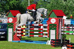 Horse jumping hurdle Royalty Free Stock Images