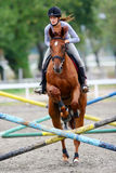 Horse jumping hurdles Royalty Free Stock Images
