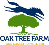 Horse Jumping Over Oak Tree Retro. Illustration of a horse jumping over oak tree set on  white background with the words text Oak Tree Farm and Equestrian Center Stock Image