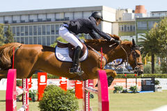 Horse jumping - Pedro Veniss Royalty Free Stock Images